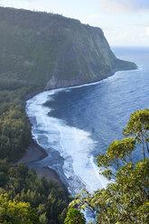 USA, Hawaii, Big Island, Waipio Valley, view to beach from above - BRF000979