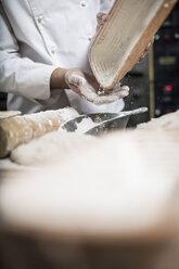 Baker preparing ceramic bowls for baking bread - ZEF003792