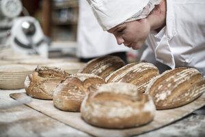 Female baker smelling fresh bread - ZEF003799