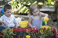 Little boy and girl gardening and watering plants - ZEF004075