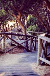 Spain, Andalusia, Huelva, boardwalk through nature park - EHF000028