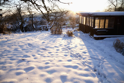 Garden with shed in snow - NDF000510