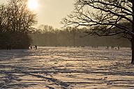 Germany, Bavaria, Munich, people walking in snow - FCF000604