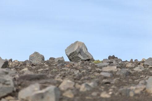 Iceland, Haelsvik, lava rocks - ATAF000064