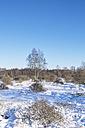 Belgium, High Fens, winter landscape - HLF000833