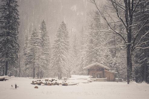 Germany, Bavaria, Berchtesgaden National Park, wooden hut in winter landscape - MJ001385