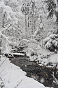 Germany, Bavaria, Berchtesgadener Land, winter landscape - MJF001395
