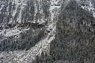 Germany, Bavaria, Berchtesgadener Land, rock face in winter - MJF001409