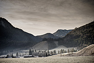 Germany, Bavaria, Berchtesgadener Land, rural landscape - MJ001459