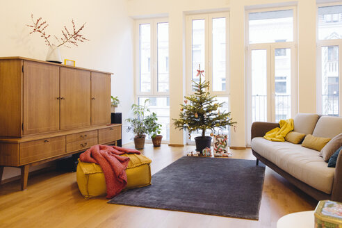 Modern loft living room with potted blue spruce Christmas tree - MFF001369