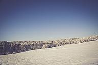 Germany, Kaiserslautern district, Palatinate Forest, winter landscape near Trippstadt - LVF002541