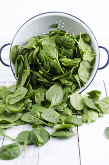 Colander and fresh spinach leaves - ODF000994