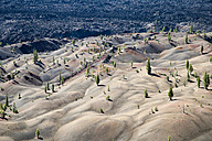 USA, California, Lassen Volcanic National Park, Cinder Cone Nature Trail - NNF000151