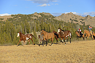 USA, Wyoming, cowboy and cowgirl herding horses in wilderness - RUEF001417