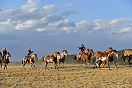 USA, Wyoming, cowboys and cowgirl herding horses in wilderness - RUEF001418