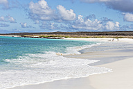 Ecuador, Galapagos Islands, Espanola, beach at Gardner Bay - FOF007301