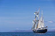 Pacific Ocean, sailing ship under sail at Galapagos Islands - FOF007560