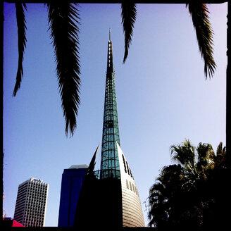tower, palm tree, perth, birds, park, skyline, city scape, architecture, western australia, australia - LUL000028