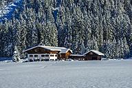 Germany, Bavaria, Stillachtal, house in winter landscape - WGF000581