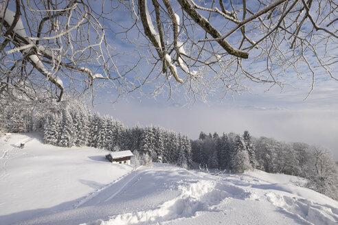 Germany, Bavaria, Upper Bavaria, Mangfall Mountains, Hocheck near Oberaudorf, Viewpoint - SIEF006372