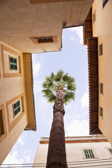 Spain, Majorca, Palmtree growing between houses - MEM000659
