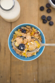 Glutenfree muesli with blueberries - LVF002593