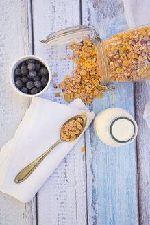 Glutenfree muesli with blueberries - LVF002602
