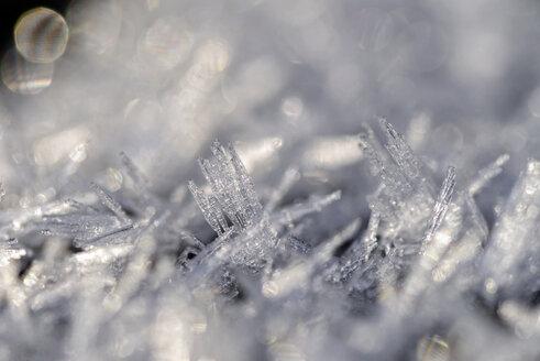 Frost, Macro - MJOF000930