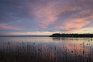 Germany, Constance district, twilight over Lake Constance with Swiss Alps at horizon - ELF001468