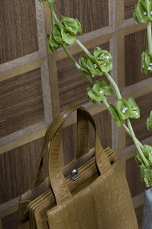 Old-fashioned brown handbag and twigs of Bells of Ireland in front of wooden wall cladding - PATF000024