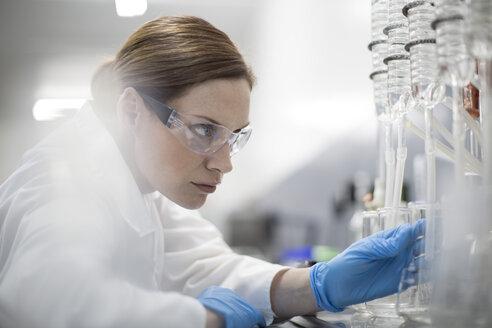Scientist in lab working with liquids - ZEF004230