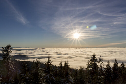 Germany, Baden-Wuerttemberg, Black Forest, View over cloud cover against the sun - JUNF000175