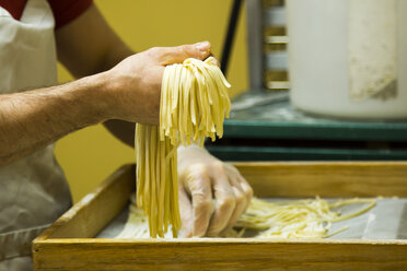 Fresh made Linguine - NG000158