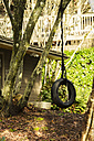 Canada, Vancouver, tire swing - NGF000161