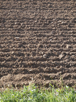 Spain, Catalonia, ploughed field - JMF000322
