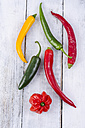 Different chili peppers on white wood - ODF001071