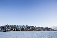 Germany, Brandenburg, Field landscape covered with first snow - ASCF000021