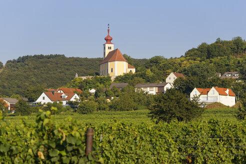 Austria, Burgenland, Donnerskirchen, St Martin's Church - SIEF006432
