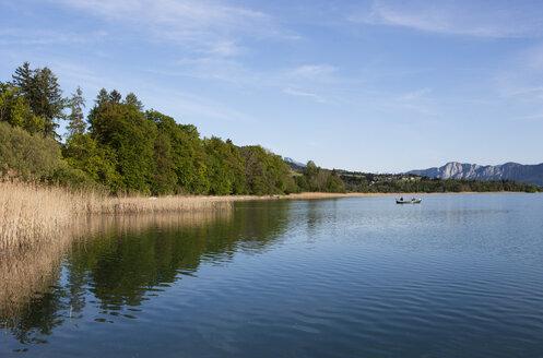 Austria, Salzkammergut, Lake Irrsee - WWF003440