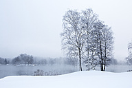 Austria, Mondsee, snow-covered winter landscape - WWF003552