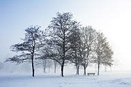 Austria, Mondsee, snow-covered park with bench - WWF003555