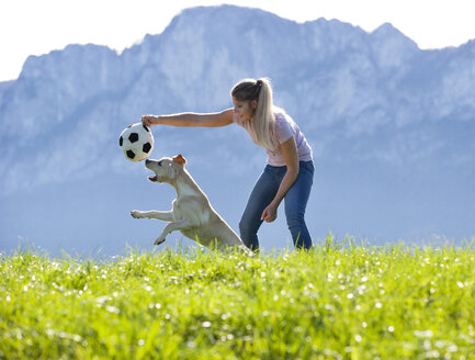 Austria, Mondsee, woman playing with Labrador Retriever on Alpine meadow - WWF003743