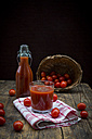 Glass and bottle of tomato juice and tomatoes - LVF002707