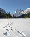 Austria, Tyrol, Pertisau, footprints in snow - MKFF000156