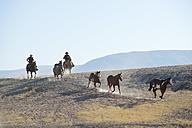 USA, Wyoming, two cowboys herding horses in badlands - RUEF001473
