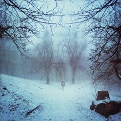 Germany, near Wuppertal, Man walking in park in winter - DWI000415