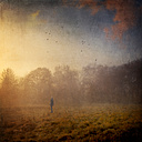 Germany, near Wuppertal, man standing on meadow in the morning, fog, digitally manipulated - DWI000422