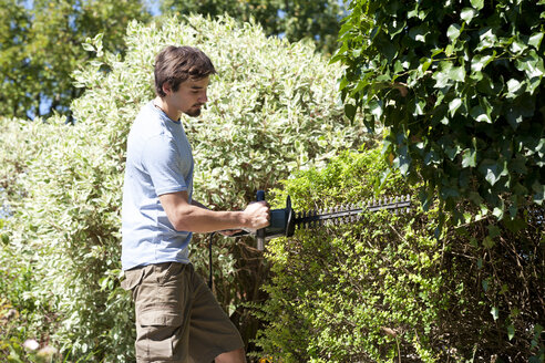 Young man pruning hedge with electric saw - WWF003833