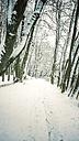 Germany, Landshut, winter landscape - SARF001330