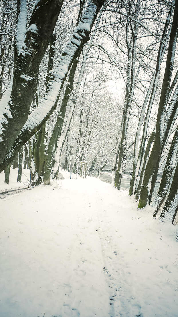 Germany, Landshut, winter landscape - SARF001330 - Sandra Roesch/Westend61